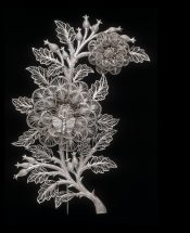 Silver filigree brooch with floral motif and butterfly
